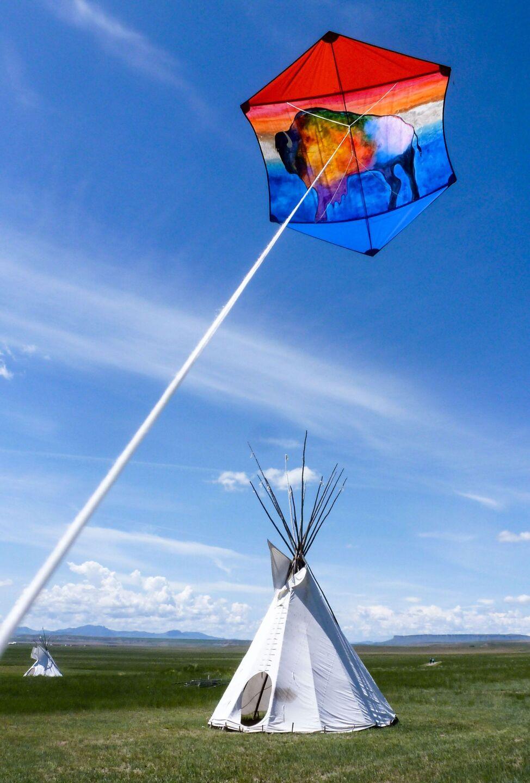 John Cadotte (Blackfeet) - Blackfoot Buffalo
