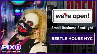 Beetle House cover