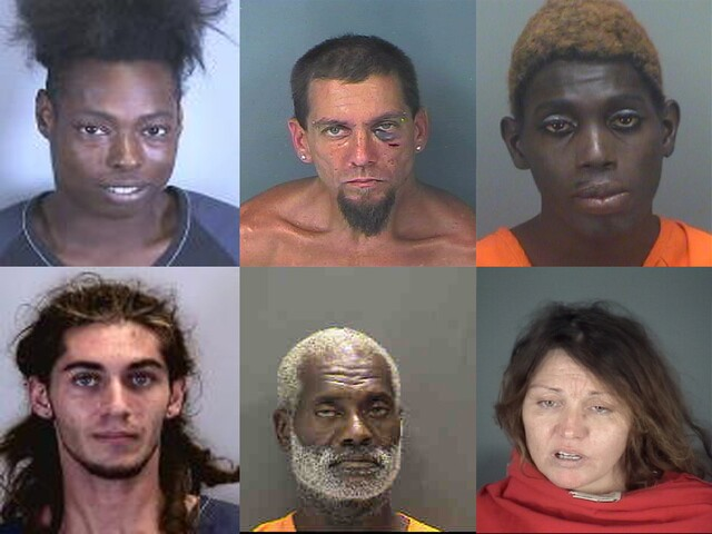 GALLERY:Mug shots from Tampa Bay for the weekend of 8/19