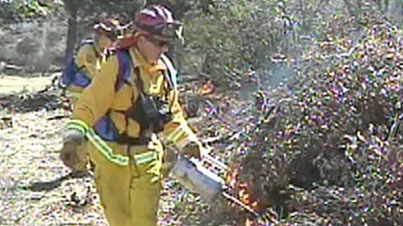 controlled burn firefighter