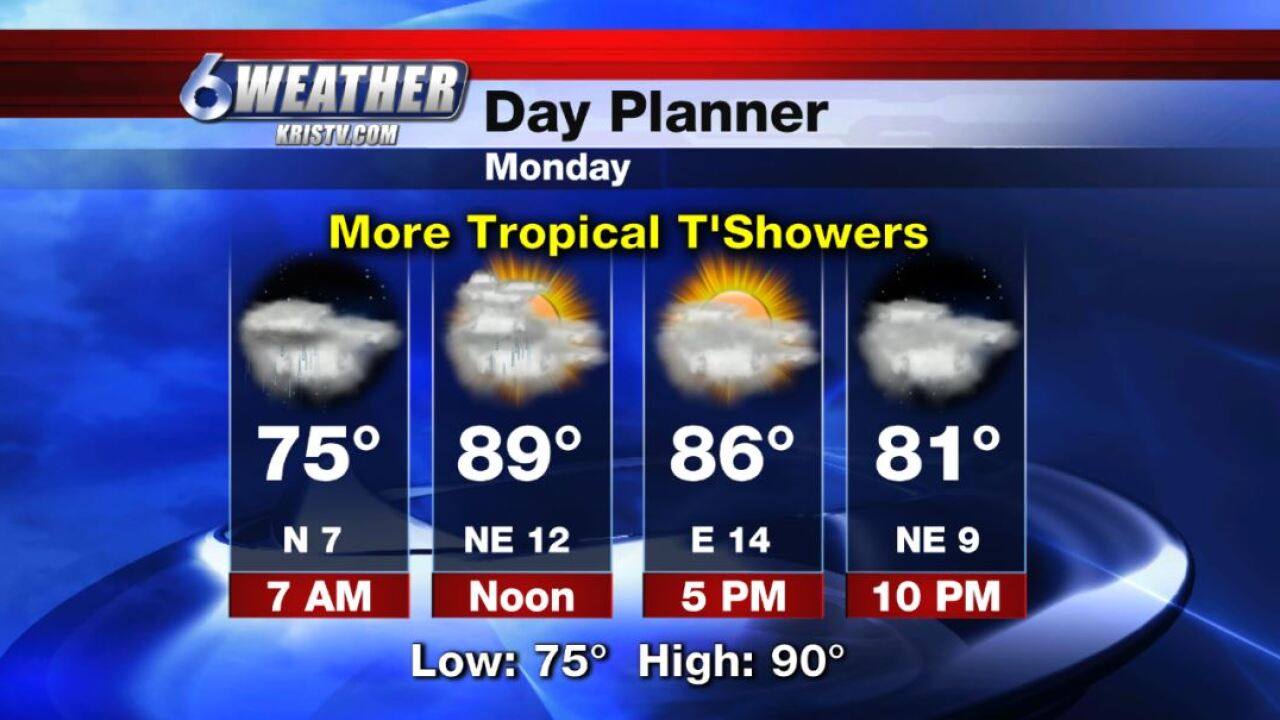 6WEATHER Day Planner for Monday 9-16-19.JPG