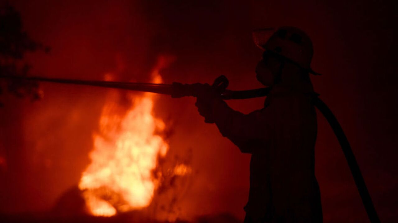 Australia wildfires: New South Wales declares 7-day state of emergency