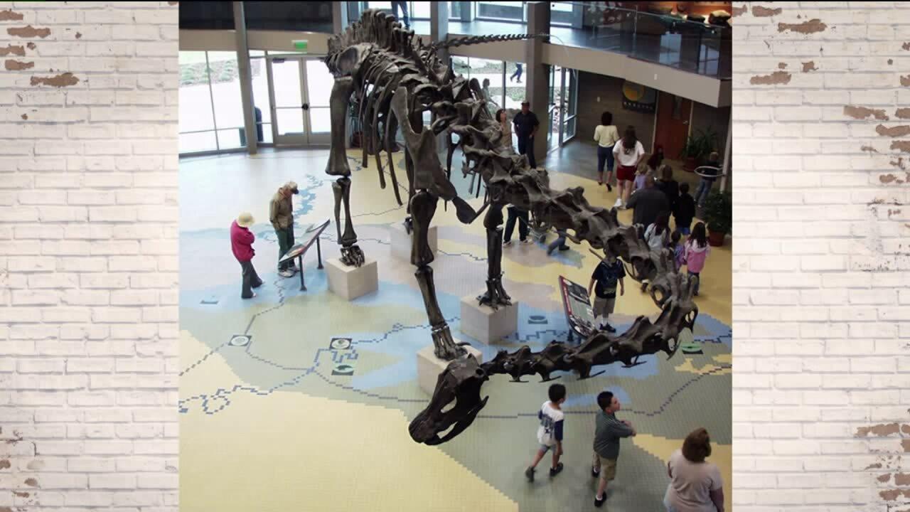 Utah Adventure: Dinofest at the Utah Field House of Natural History State ParkMuseum