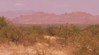 KNXV Sasabe Border Desert Generic