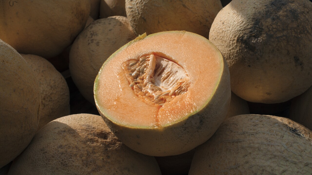 Meijer Recalls Selected Cantaloupe Products Due To Risk Of Salmonella The fda had announced a recall of chamberlain farms' cantaloupes on aug. meijer recalls selected cantaloupe