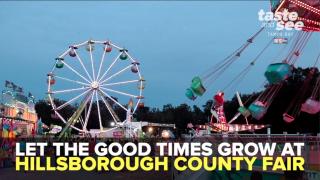 Hillsborough County Fair Thumbnail 1.png