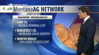 Montana Ag Network Weather: May 29th