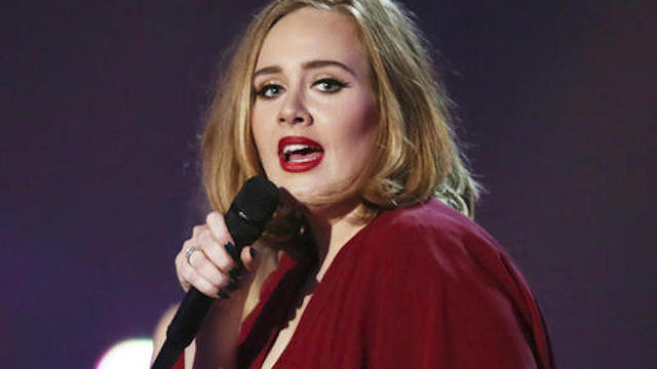 Pop singer Adele stops concert to scold security guard
