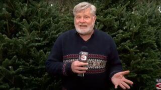 Spirit of Acadiana - Pollard's Christmas Trees.JPG