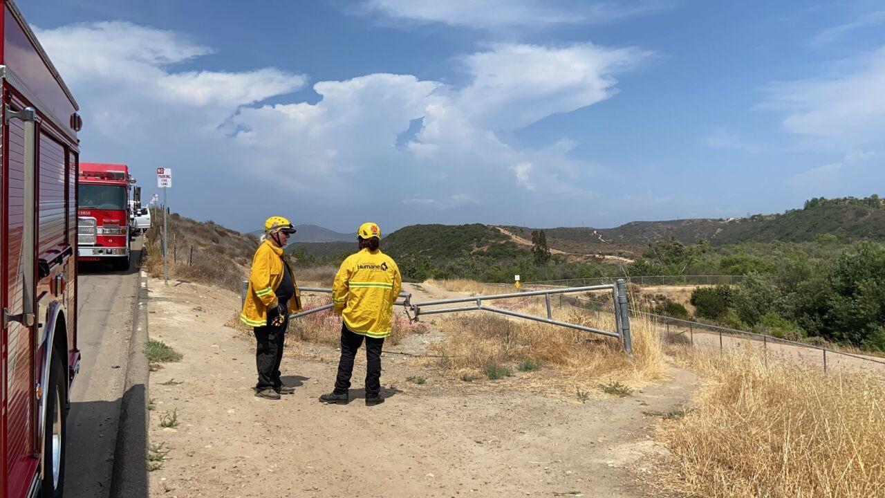 SDHS Emergency Response Team Horse Rescue Carmel Valley 2021-07-22 at 2.52.55 PM.jpeg