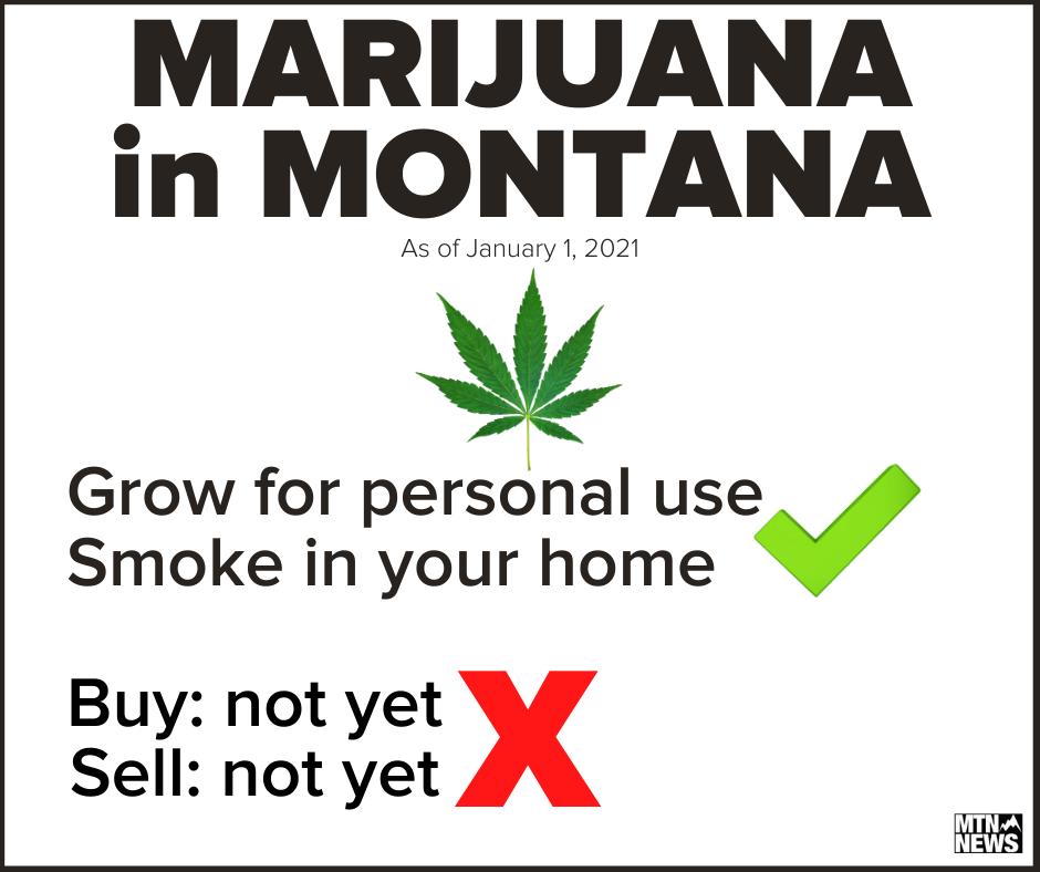 marijuana in montana.png
