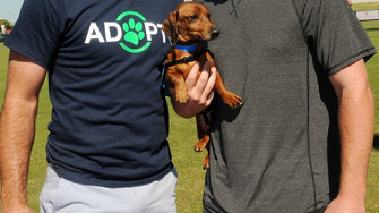 PHOTO GALLERY: Verlander, Upton's adoption event