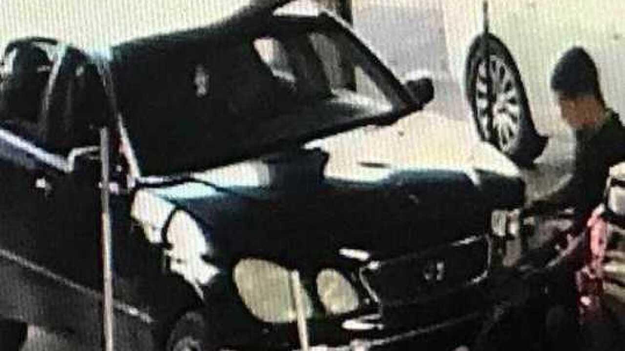 Deputies seeking car burglary suspects