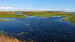Lake Okeechobee water level drops below targeted range