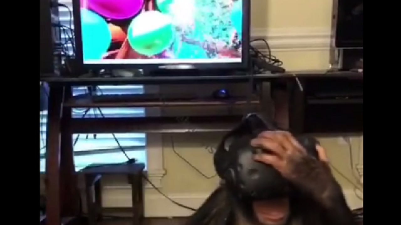 WATCH: Chimpanzee pops balloons in virtual reality