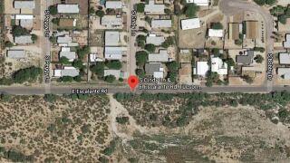 Javelina found dead on Tucson's east side