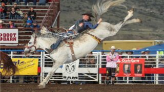 Cody Stampede results: Orin Larsen's career-high 93 sets bareback arena record