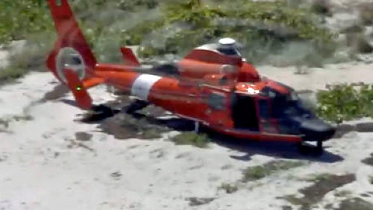 Coast Guard chopper survives bird strike