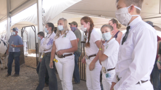 Social distancing and masks are worn at the Gallatin County 4-H event