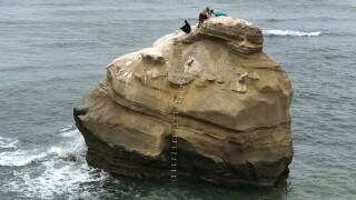 Photo: Did these 2 raise Sunset Cliffs mermaid?