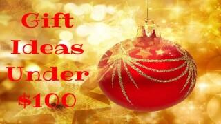 15 gifts under $100