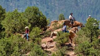 Horseback riding Colorado Springs