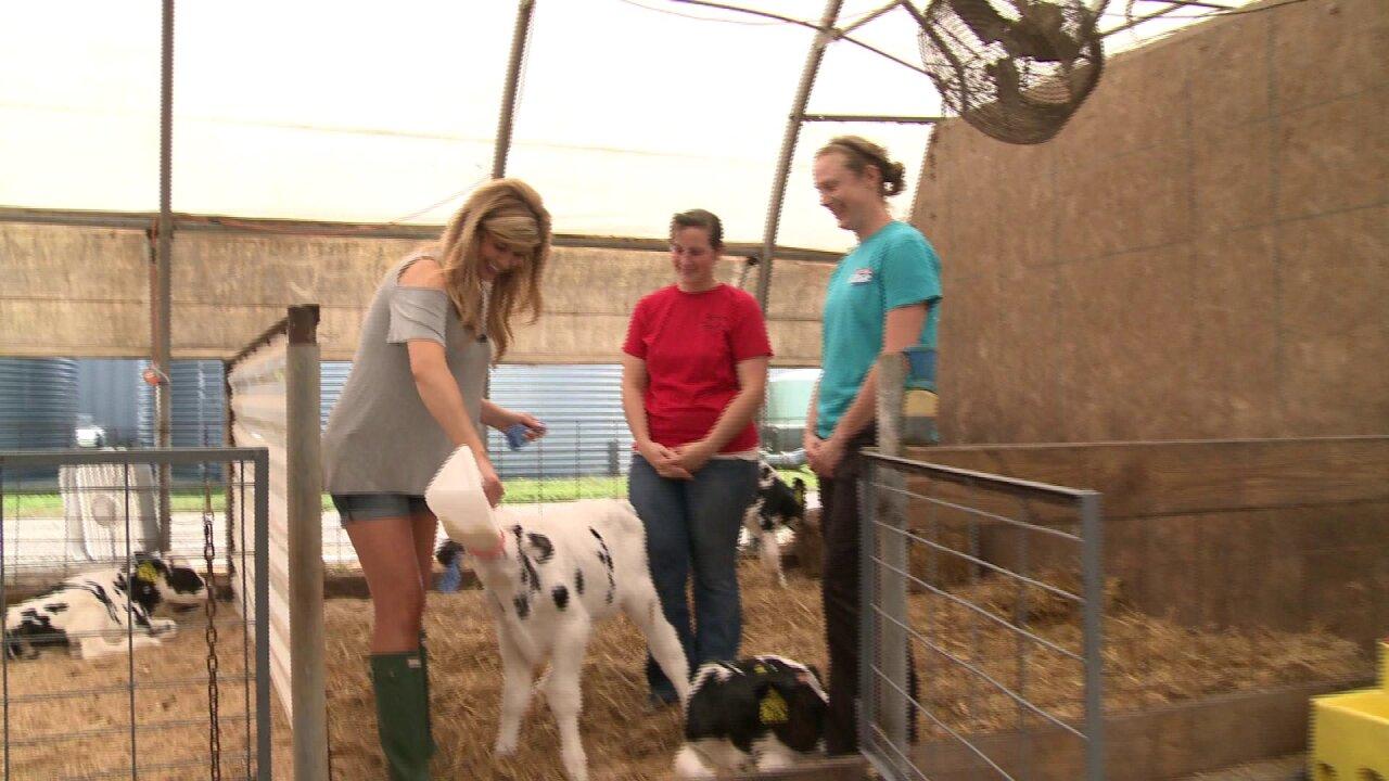Nikki-Dee heads to thefarm