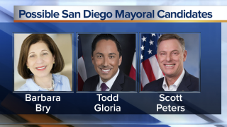 These three Democrats have filed papers with the city for the 2020 mayor's race