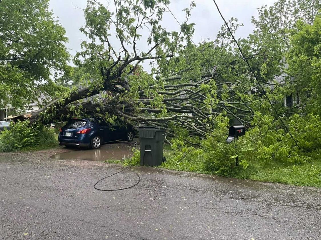 Gallatin storm damage