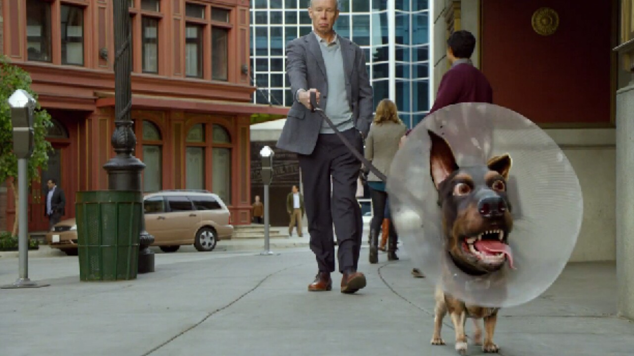 Audi Doberhuahua Super Bowl commercial