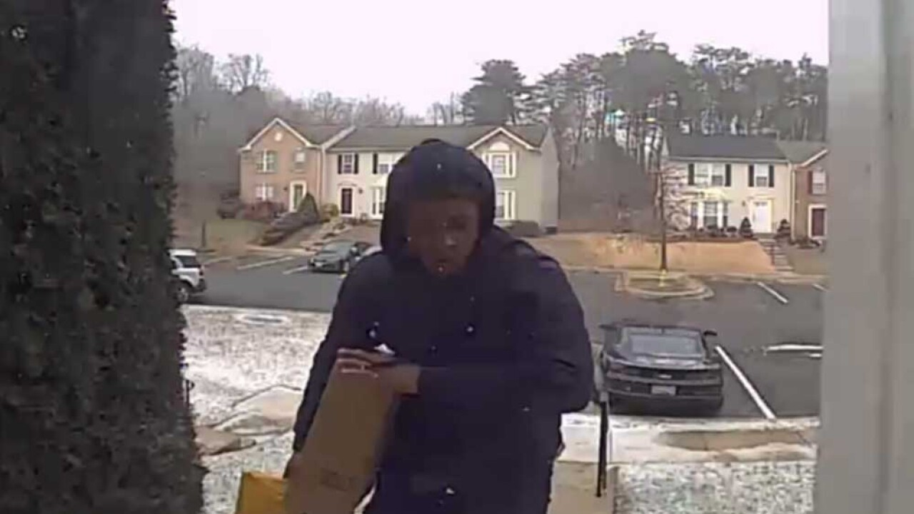 porch pirate.jpg