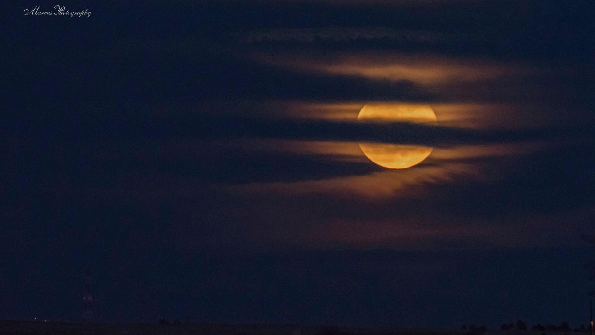 Kara Marcus Worm Moon.jpg