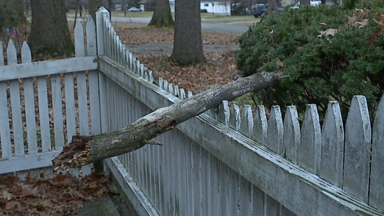 Cleveland Heights residents upset by falling trees hazard at vacant home