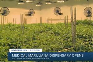 How you can now legally buy medical marijuana in Richmond