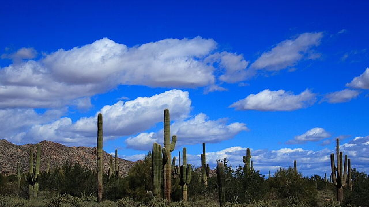 WANDERLUST! 5 Ultimate Summer Hikes in Arizona