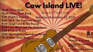 cow island live.jpg