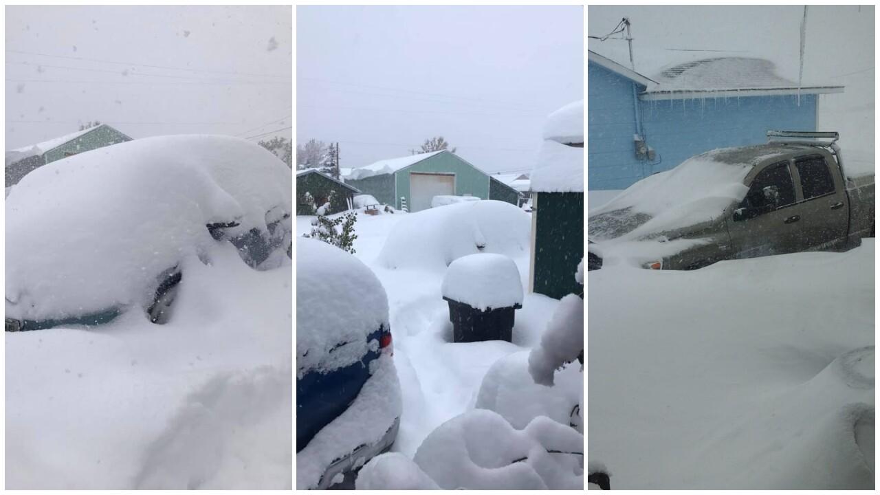 Image result for montana snow storm