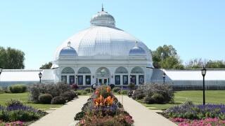 Celebrating spring at the Buffalo and Erie County Botanical Gardens