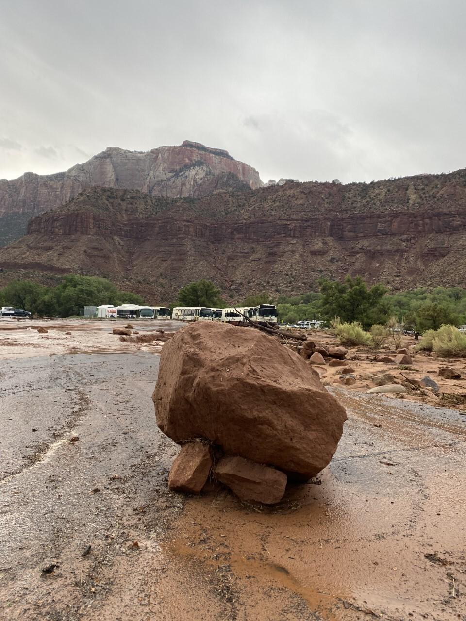 Zion National Park_rock in parking lot_6_29_2021.jpg