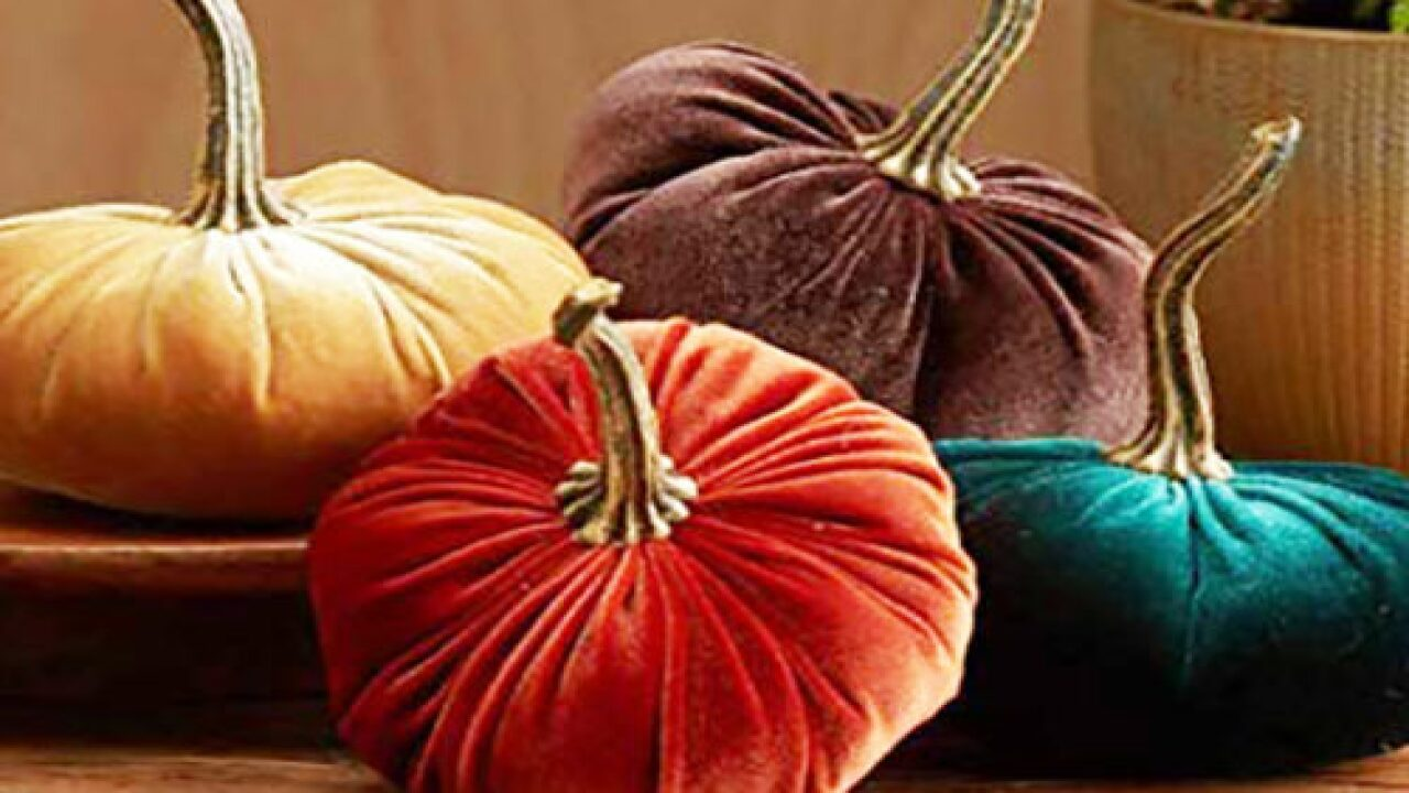 Velvet Pumpkins Are The Trendiest Fall Decoration You Need In Your House ASAP