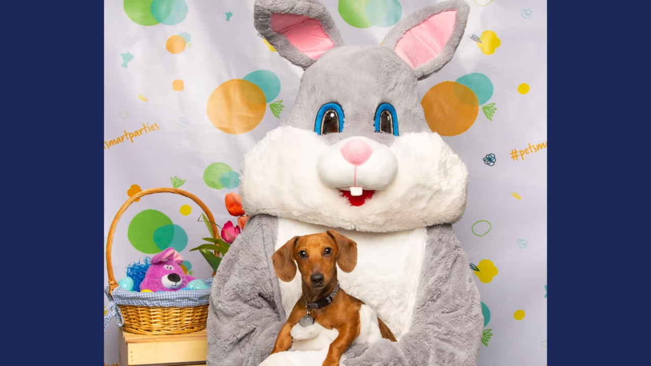 PetSmart offering free pictures with Easter Bunny this weekend