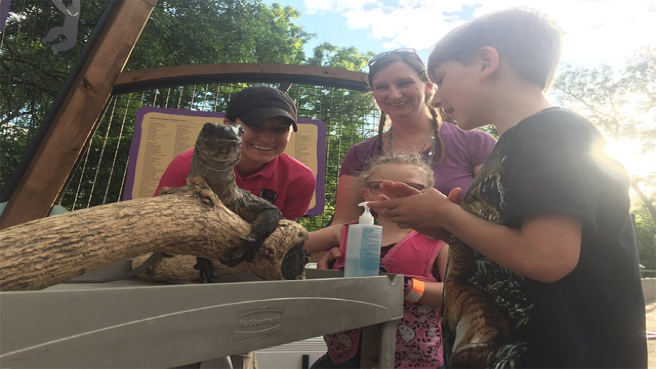Special needs children enjoy Zoo's 'Dream Night'