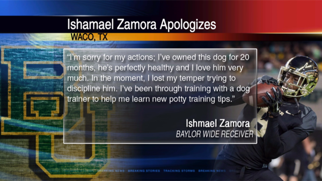 GRAPHIC: Video shows Baylor football player abusing dog