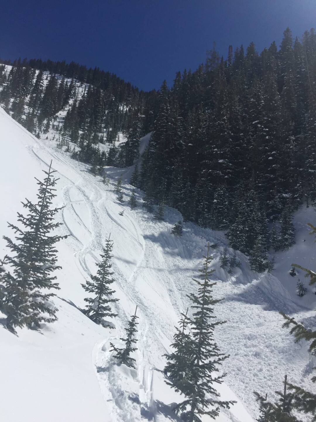 March 24 2020 avalanche in San Miguel County, snowboarder injured