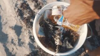 Bryan Galvan, 30, cleans up trash on a Palm Beach County beach.jpg