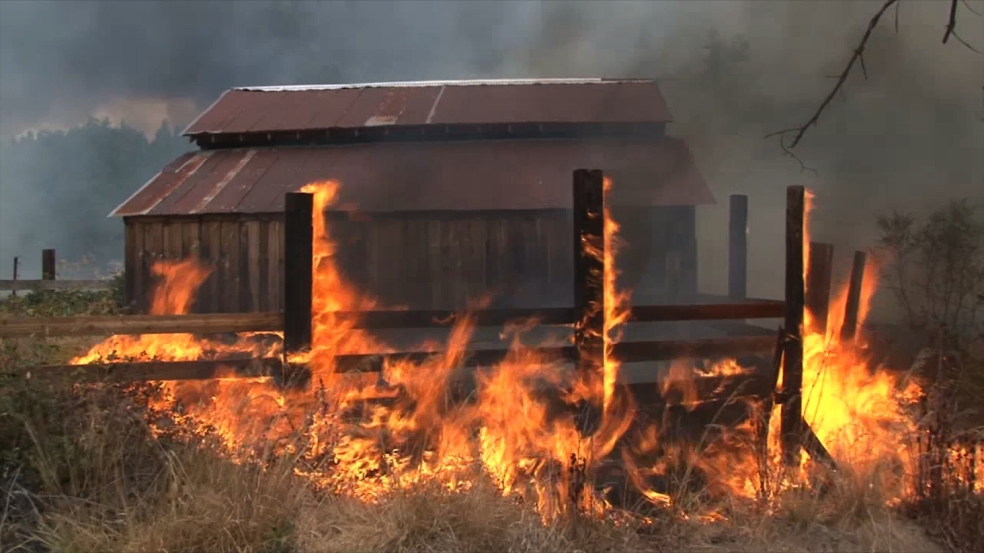 Photos: Hundreds of homes go up in flames in Californiawildfires
