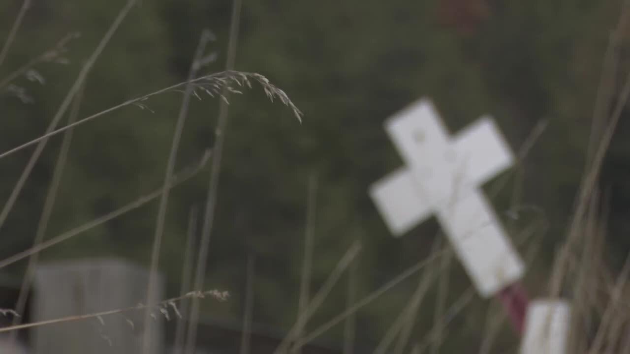 crash cross