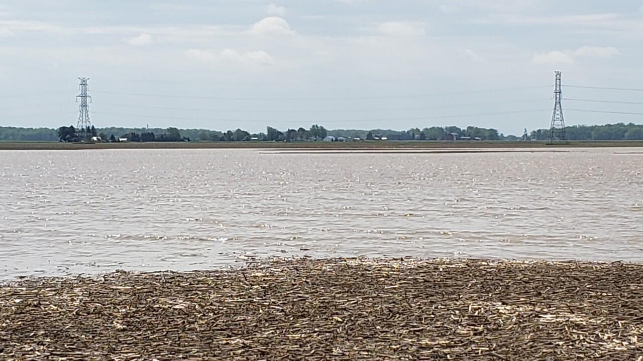 rain impacting farmers