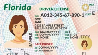 Florida Driver's Licenses.jpg
