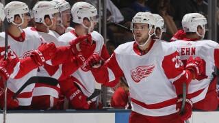 Red Wings fall to Islanders in OT